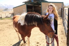 Equine Facilities therapy yard